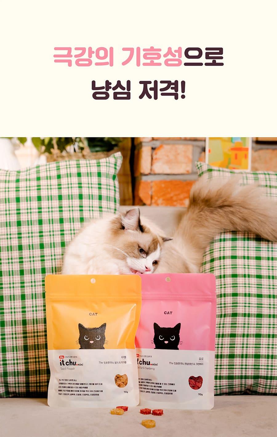 it 더 잇츄 캣 미니 (흰살생선&크랜베리/참치&파인애플)-상품이미지-4