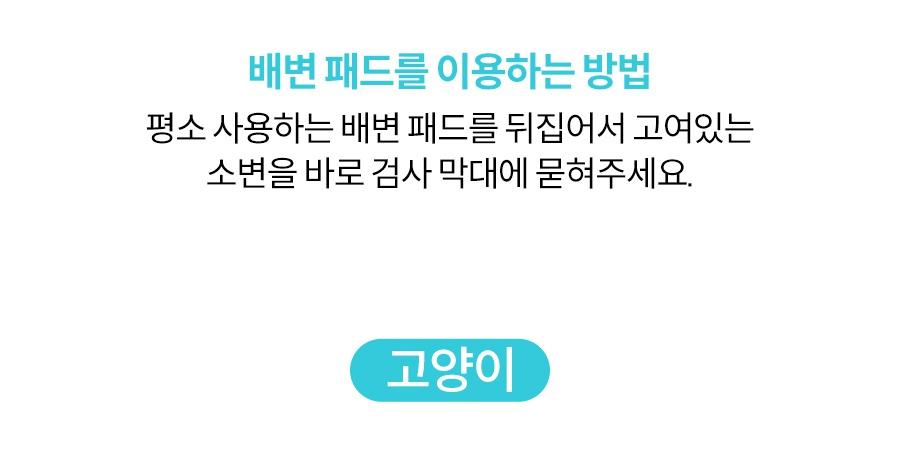 [리뉴얼이벤트] 어헤드 베이직 리뉴얼 출시-상품이미지-14